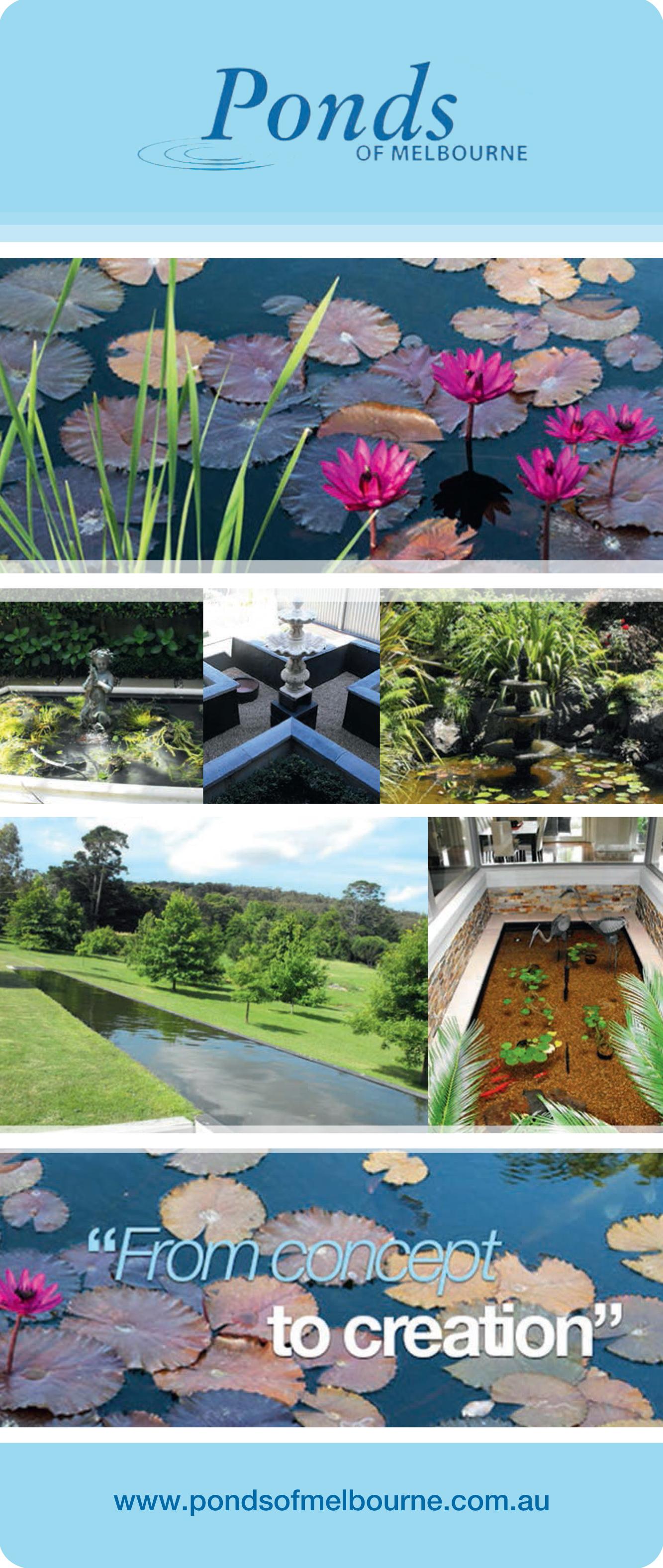 Ponds of melbourne ods for Garden pond melbourne