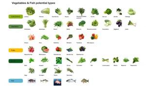 sff_vegetables_fish_fta_800