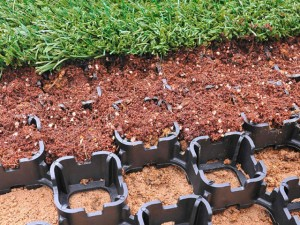 Grass Pavers – A Sustainable Alternative
