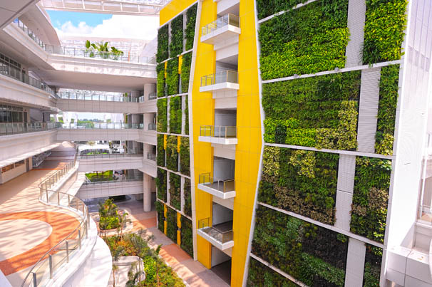 World's Largest Green Wall – Institute of Technical ...