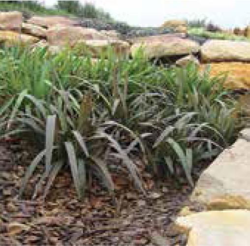 Blaze product ods for Soft landscape materials