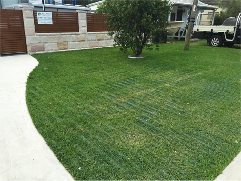 Turf grass reinforcement product ods for Soft landscape materials