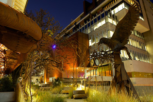 Communal backyard wins at aila awards ods for Australian institute of landscape architects