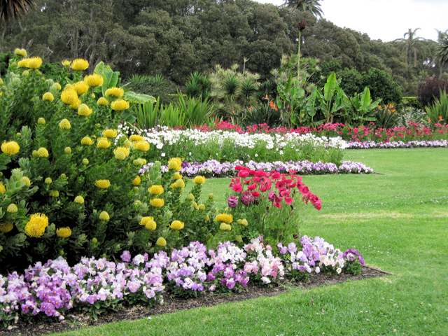 Ground breaking new horticultural event announced ods for Gardening australia