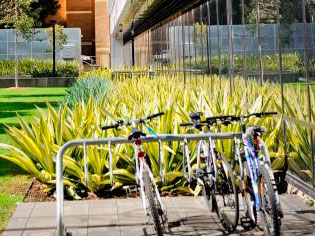 New bicycle parking products   CoraBikeimagethree   ODS