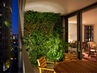 Green Walls - The new trend in apartment living  GreenwallCompany ...