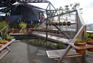 Melbourne docklands wins landscape of the year ods for Landscape contractors melbourne