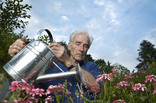 Launch of Good Gardening Magazine   Landscape-3   ODS