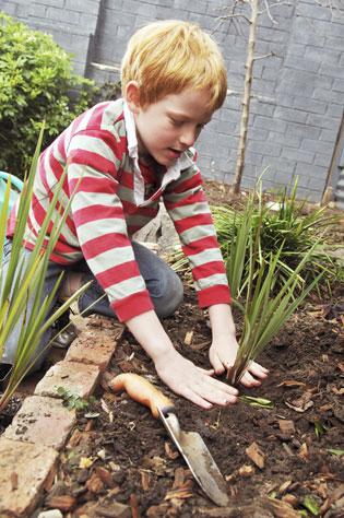 Launch of Good Gardening Magazine   Landscape-4   ODS