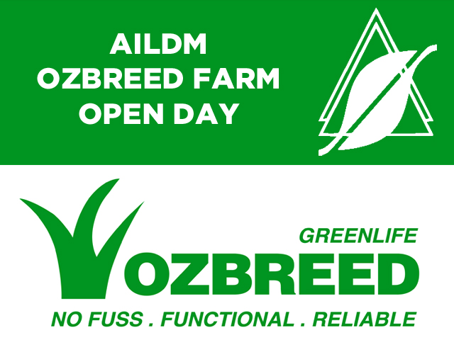 Out On The Farm | Ozbreed1-2017032014899872301113 | ODS