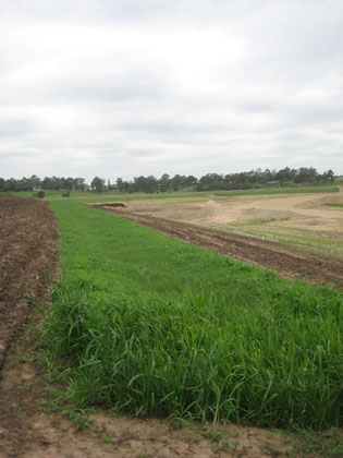 Effective erosion control   Penrith-Lakes-TRM-after   ODS