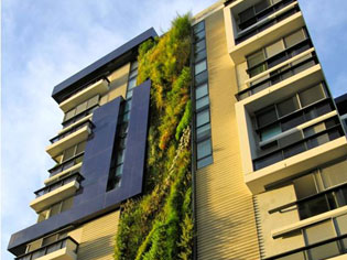Who Scooped the Landscaping Australia Awards? | Phillip-Johnson-Landscapes- | ODS