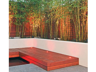 Red Cloud Bamboo Ods