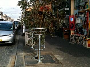 Self Watering Tree Pits | TERRAFIRMATHREE | ODS