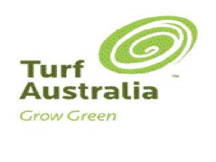 Turf in High Demand   TURFAUSIMAGEONE   ODS