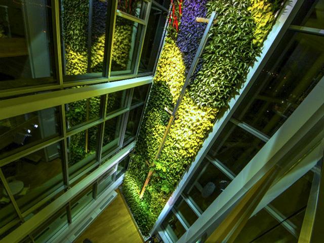 World's tallest indoor living wall | TallestLivingWall_hero-2014050513992669928300 | ODS