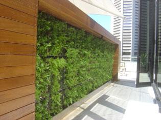 Water features and green walls   UrbanPondsImageOneDexc   ODS
