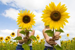 Blooming good | Yatesone | ODS