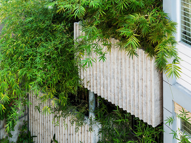 Vertical Landscaping | bamboo1-2017051714949877273785 | ODS