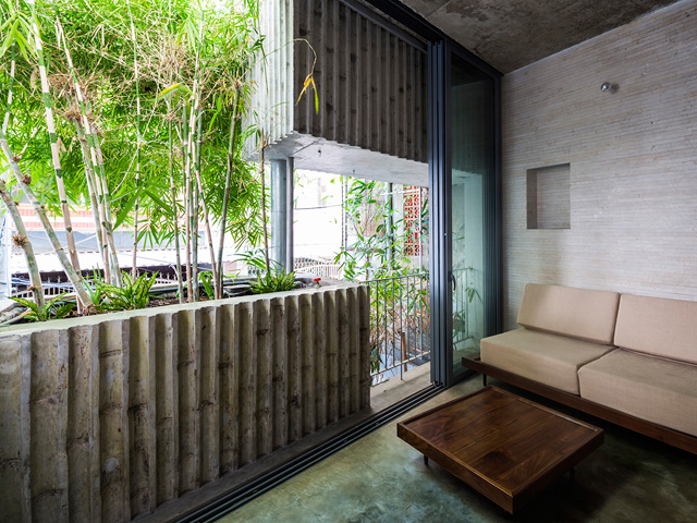 Vertical Landscaping | bamboo3-2017051714949877277412 | ODS