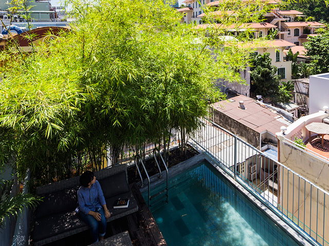 Vertical Landscaping | bamboo4-2017051714949877279675 | ODS