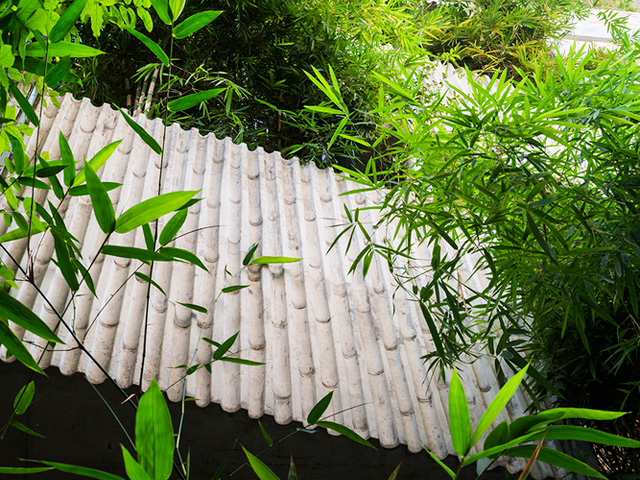 Vertical Landscaping | bamboo5-2017051714949877272762 | ODS