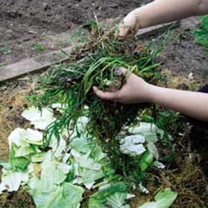 Making compost   comp3   ODS