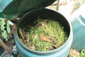 Leaf compost | compost4 | ODS