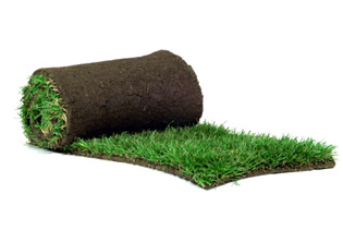 Natural and synthetic turf to suit any lifestyle | hg_turf | ODS