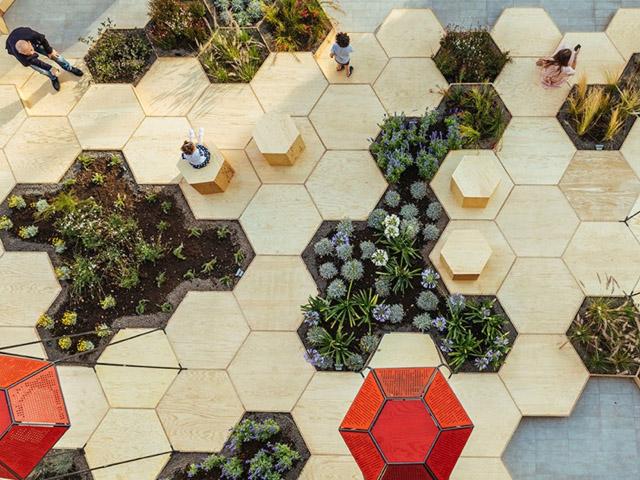 Honeycomb Piazza   honeycomb1-2016071114682263708246   ODS