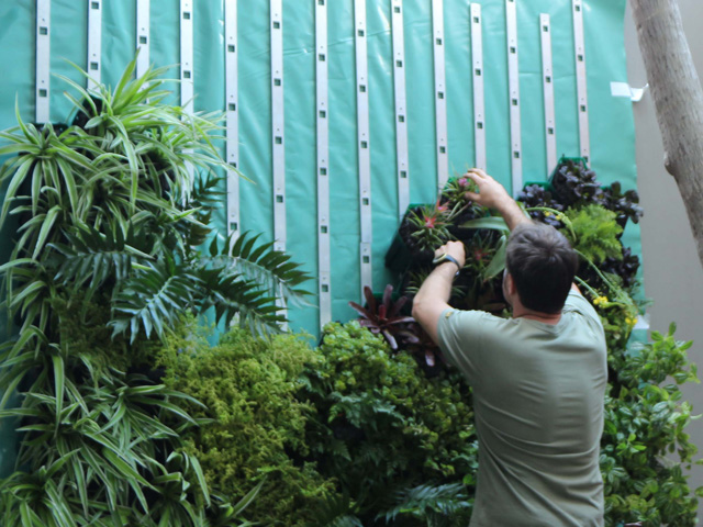 Vicinity Greenwall Systems ODS