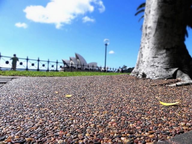Tree Pit Talk | stoneset11 | ODS