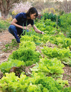 Horticulture service writer jobs