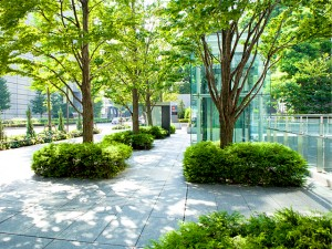 Green Infrastructure to Make Cities More Liveable and Sustainable