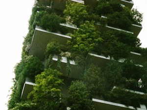 Urban Designer Calls for Greener Neighbourhoods