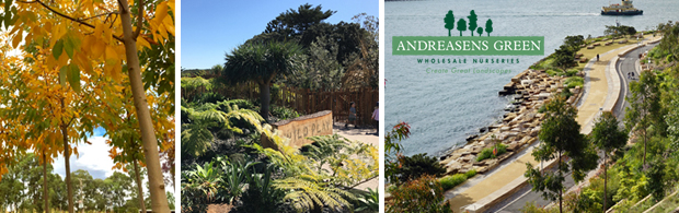 Andreasens Green Wholesale Nurseries | ODS