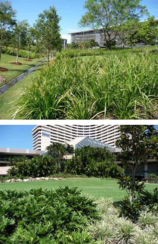 Organic Lifte Multi Pro - a proven winner for landscaping | enviroganics_1_l | ODS